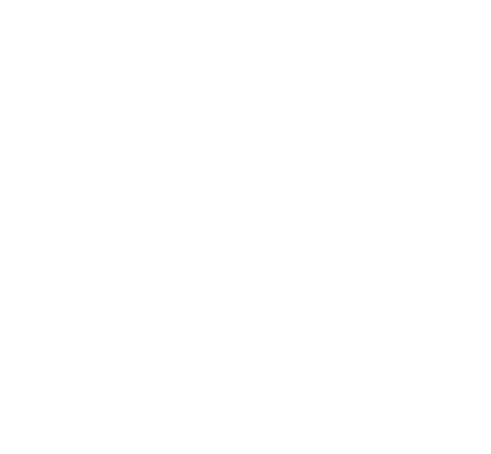 Web-StoryBrand-Guide-Badge-WHITE.png